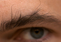 how to trim bushy eyebrows. eyebrows...trim em! because you should have two, not one. | the men\u0027s room how to trim bushy eyebrows k